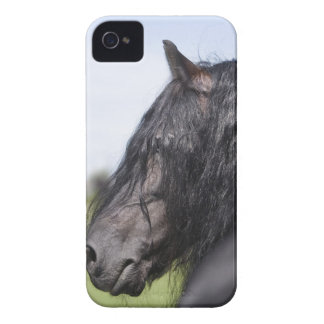 portrait of black horse with long mane iPhone 4 Case-Mate cases