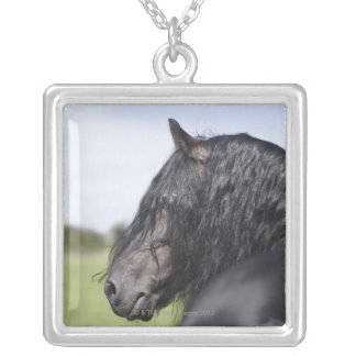 portrait of black horse with long mane silver plated necklace