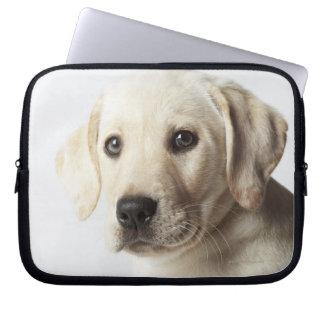 Portrait of blond Labrador Retriever Puppy Laptop Sleeve