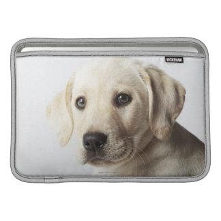 Portrait of blond Labrador Retriever Puppy Sleeve For MacBook Air