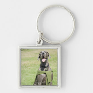 Portrait of Blue Great Dane Silver-Colored Square Key Ring