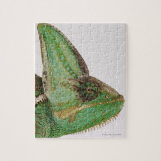 Portrait of boldly colored Yemen chameleon Jigsaw Puzzle