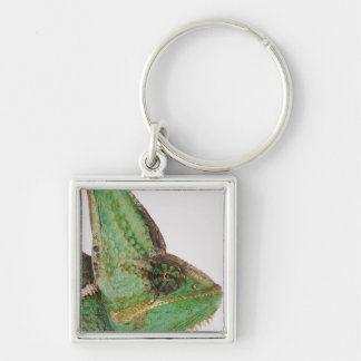 Portrait of boldly colored Yemen chameleon Key Ring