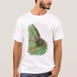 Portrait of boldly coloured Yemen chameleon T-Shirt