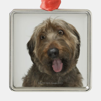 Portrait of Briard dog Christmas Ornament