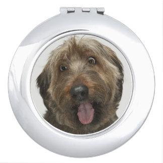 Portrait of Briard dog Compact Mirrors