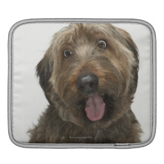 Portrait of Briard dog iPad Sleeve