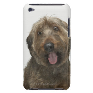 Portrait of Briard dog iPod Touch Case-Mate Case