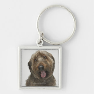 Portrait of Briard dog Key Ring