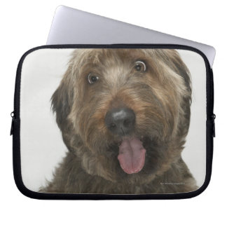 Portrait of Briard dog Laptop Sleeve