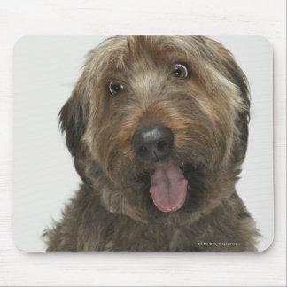 Portrait of Briard dog Mouse Pad