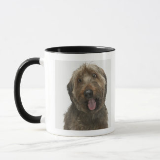 Portrait of Briard dog Mug