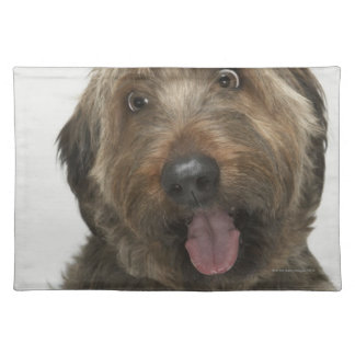 Portrait of Briard dog Placemat