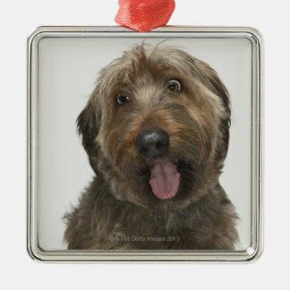 Portrait of Briard dog Silver-Colored Square Decoration