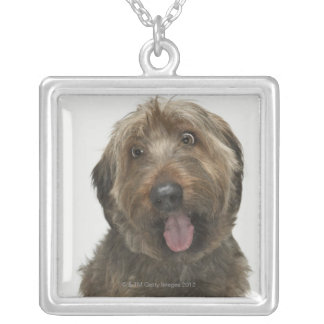 Portrait of Briard dog Silver Plated Necklace