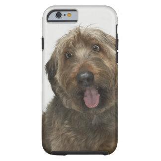 Portrait of Briard dog Tough iPhone 6 Case