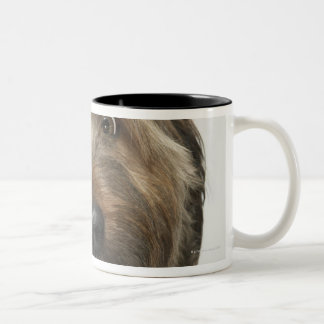 Portrait of Briard dog Two-Tone Coffee Mug