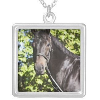 portrait of brown horse 2 silver plated necklace