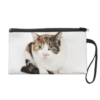 Portrait of Calico cat Wristlet