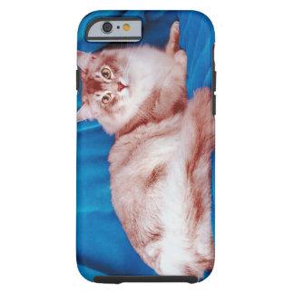 Portrait of cat 3 tough iPhone 6 case