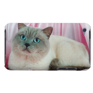 Portrait of cat 4 iPod touch covers