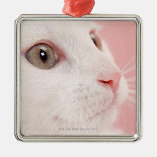 Portrait of cat christmas ornament