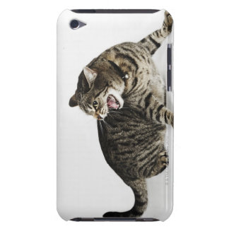 Portrait of cat hissing iPod touch Case-Mate case