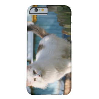 Portrait of cat on fence barely there iPhone 6 case