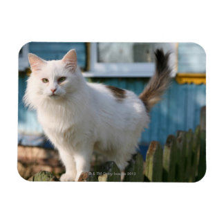 Portrait of cat on fence rectangular photo magnet