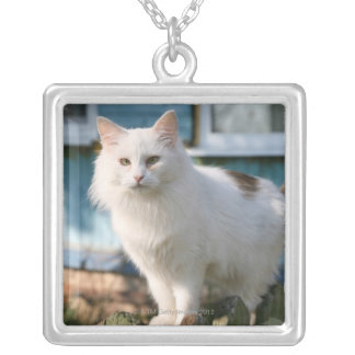 Portrait of cat on fence silver plated necklace