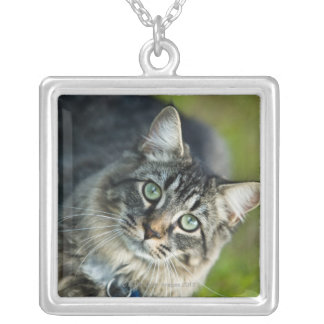 Portrait of cat outdoors silver plated necklace