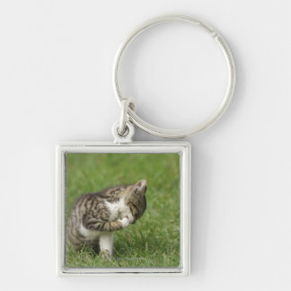 Portrait of Cat Silver-Colored Square Key Ring