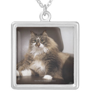 Portrait Of Cat Sitting In Chair Silver Plated Necklace