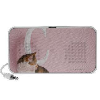 Portrait of cat PC speakers