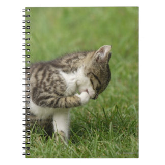 Portrait of Cat Spiral Note Book