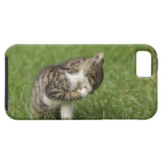 Portrait of Cat Tough iPhone 5 Case
