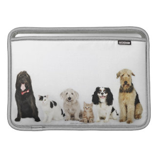 Portrait of cats and dogs sitting together MacBook sleeve