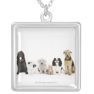 Portrait of cats and dogs sitting together square pendant necklace