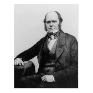 Portrait of Charles Darwin, 1854 Postcard