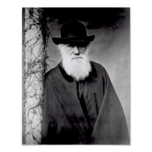 Portrait of Charles Darwin  1881 Posters