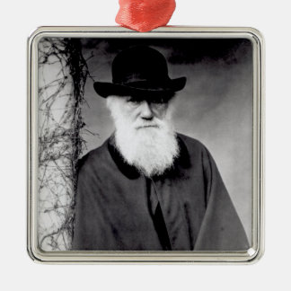 Portrait of Charles Darwin  1881 Silver-Colored Square Decoration