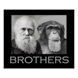 Portrait of Charles Darwin and Ape Poster