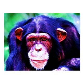 Portrait of Chimpanzee Post Card