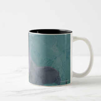 Portrait of Common Bottlenose Dolphin, Caribbean Two-Tone Coffee Mug