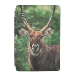 Portrait of Common Waterbuck iPad Mini Cover