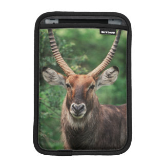 Portrait of Common Waterbuck iPad Mini Sleeve