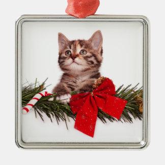 Portrait Of Cute Christmas Kitten Christmas Ornament