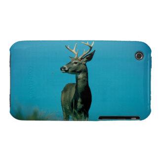 Portrait of deer iPhone 3 cases