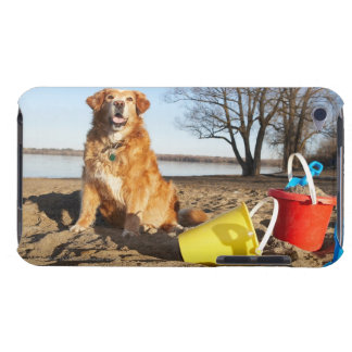 Portrait of dog at beach with sand toys, Ottawa, iPod Case-Mate Case