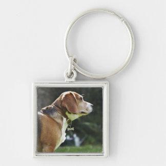 Portrait of Dog Key Chain
